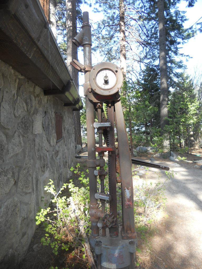 Living Tree Stump Rogue River Gorge National Parks Blog
