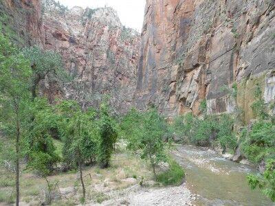Riverside Walk in Zion National Park