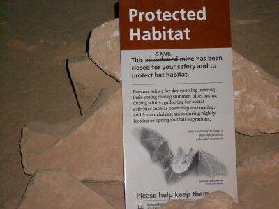 bat sign found in Stanton's Cave