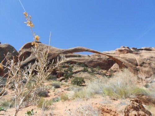 land scape arch