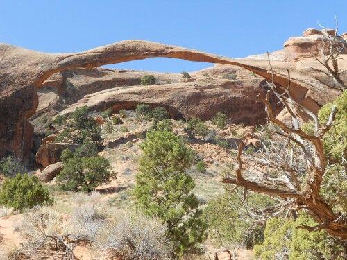 landscape arch devils garden Arches National Park