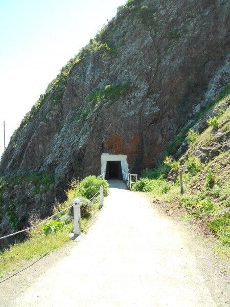 point bonita lighthouse trail tunnel