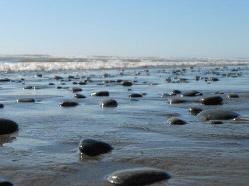 beach #1 Olympic National Park
