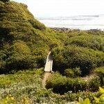 beach #1 path