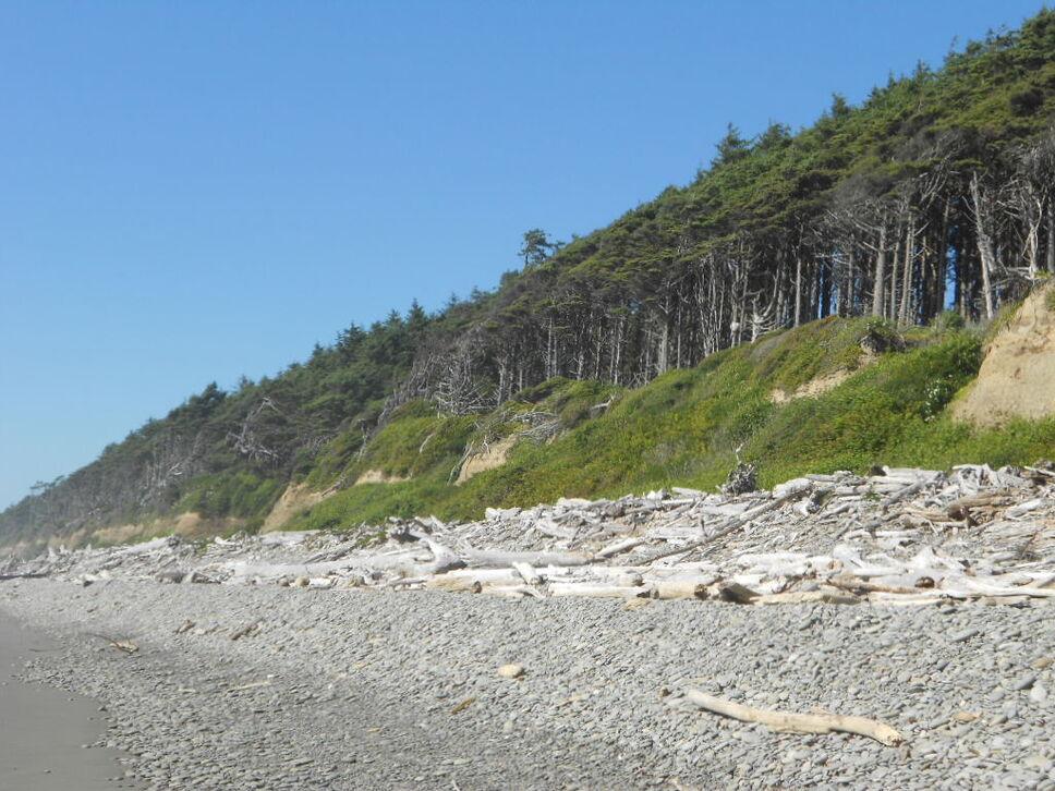 beach #1 photo